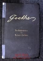 Goethe : Wehe der Nachkommenschaft, die Dich verkennt : Ein Bekenntnis.