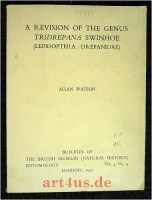 A Revision of the Genus Tridrepana Swinhoe (Lepidoptera : Drepanidae)