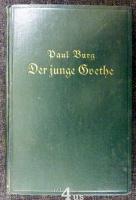 Der junge Goethe  Ein Roman in 2 Büchern.