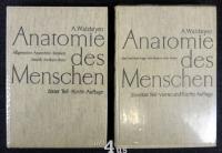 Anatomie des Menschen; 2 Bände