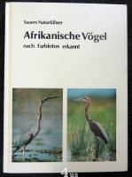 Afrikanische Vögel nach Farbfotos erkannt.